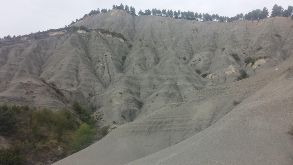 Interessante Gebilde im Sand :-?